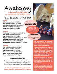 thumbnail of anatomy-fall-2017